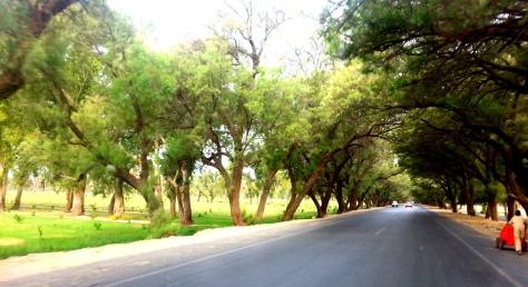 Jalalabad Images © 2015 Niazmina